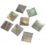 Όστρακα σε κομμάτια Black lip pearl oyster 25 x 25 x 1.2mm.