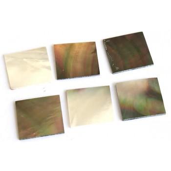 Όστρακα σε κομμάτια Black lip pearl oyster 17 x 17 x 0.9mm.